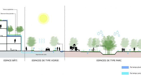 La gestion de l'eau pluviale en milieu urbain, une contrainte réglementaire et technique, une opportunité et un outil pour réintégrer une réelle nature dans la ville