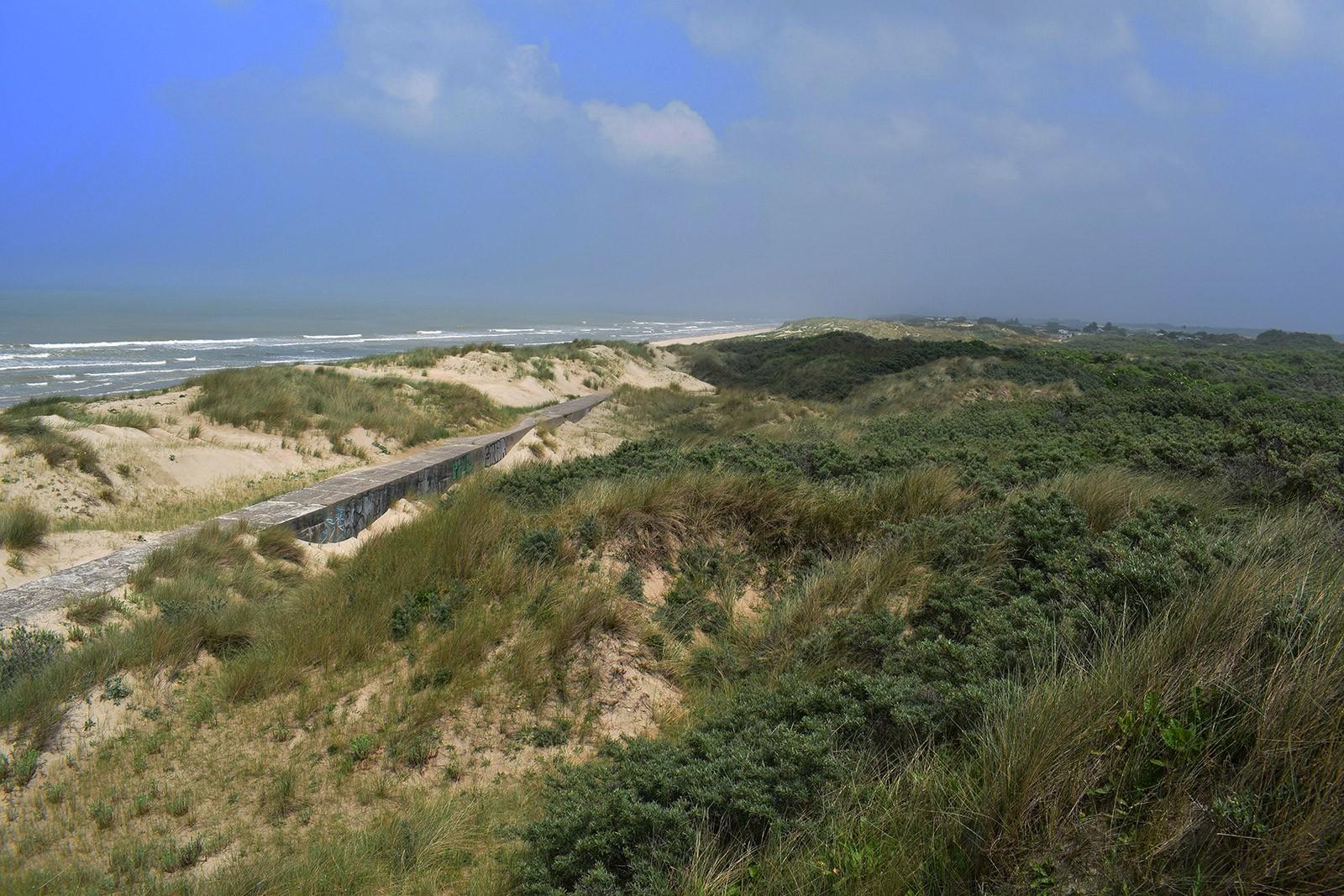 Mur antichar construit en 1944 sur la plage et aujourd'hui enfermé dans les dunes {Bray-Dunes, Pas-de-Calais}. © Y. BQ